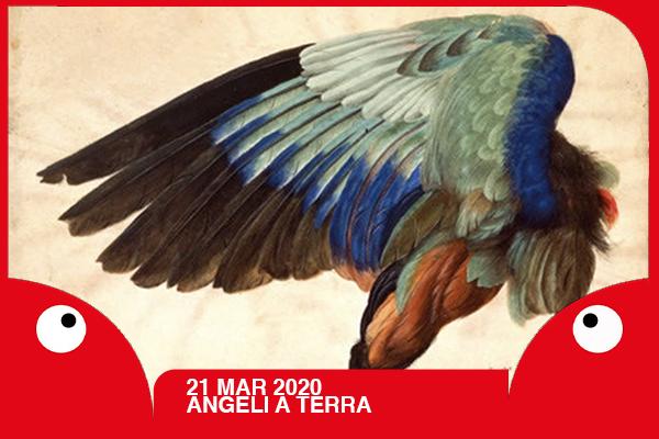 Biglietti - Angelo a terra - Teatro Rossini di Pontasserchio